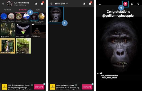 descargar historias de instagram descargar videos fotos