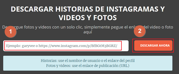 descargar video de instagram PC