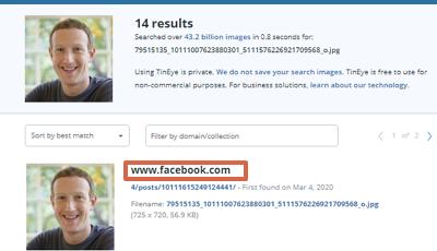 Buscar y encontrar personas en Facebook por foto con TinEye paso 3