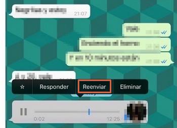 Cómo guardar o descargar audios de WhatsApp para iOS paso 1