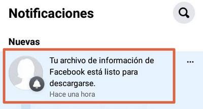 Guardar y descargar todas las fotos de tu perfil de Facebook desde el dispositivo móvil paso 8