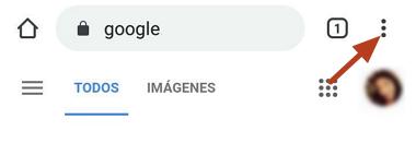 Cómo ver el historial de descargas en Google Chrome desde el celular paso 2
