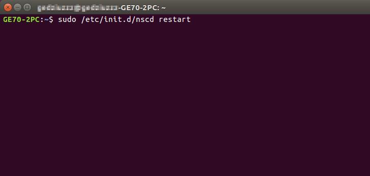como hacer flush dns en linux