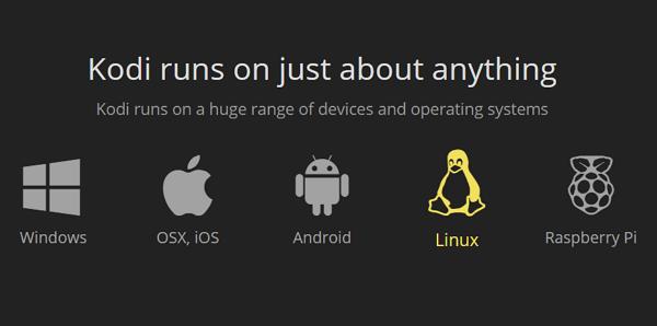 Actualizar Kodi en Linux
