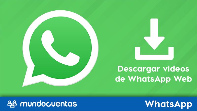 Descargar videos, fotos y audios de WhatsApp Web Windows y Mac