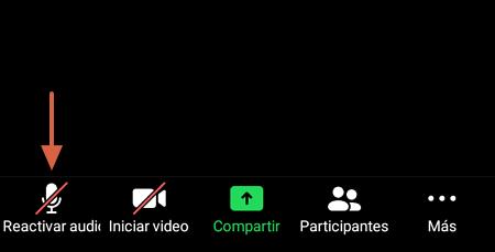 Cómo activar el audio durante una videollamada en Zoom paso 1