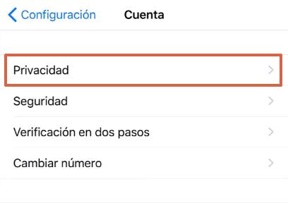 Cómo bloquear WhatsApp desde un iPhone a través de la aplicación paso 3