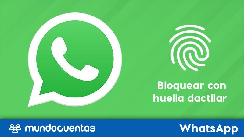 Cómo bloquear tu WhatsApp protege tus chats con una contraseña o huella dactilar.