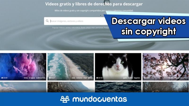 Descargar videos sin copyright los mejores bancos de videos libres de derechos de autor