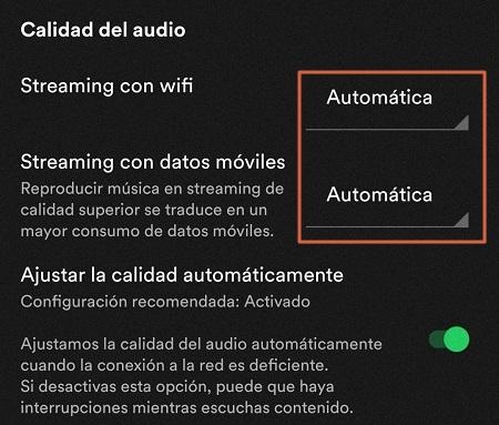 Configuración adicional de Spotify paso 3