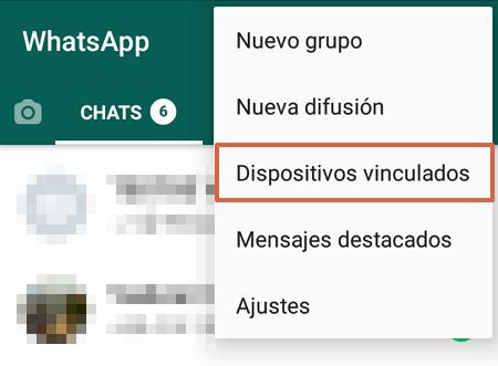Cómo grabar videollamadas en WhatsApp Web usando Ezvid paso 4