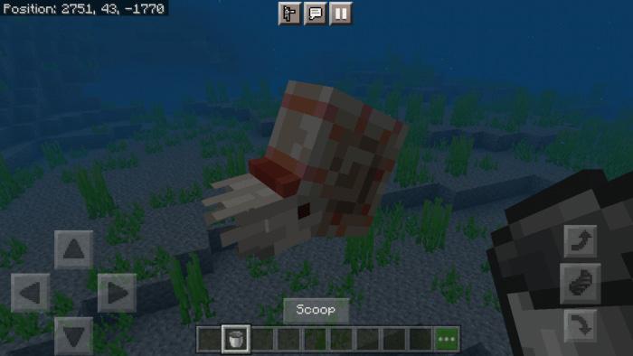 Dónde conseguir conchas de nautilo en Minecraft
